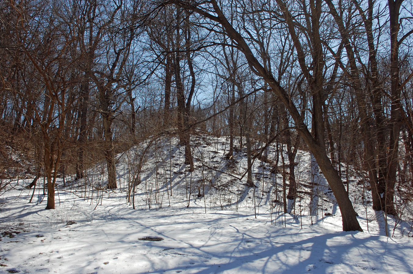 Thunderbird Burial Mound in Ravine Bottom Lands
