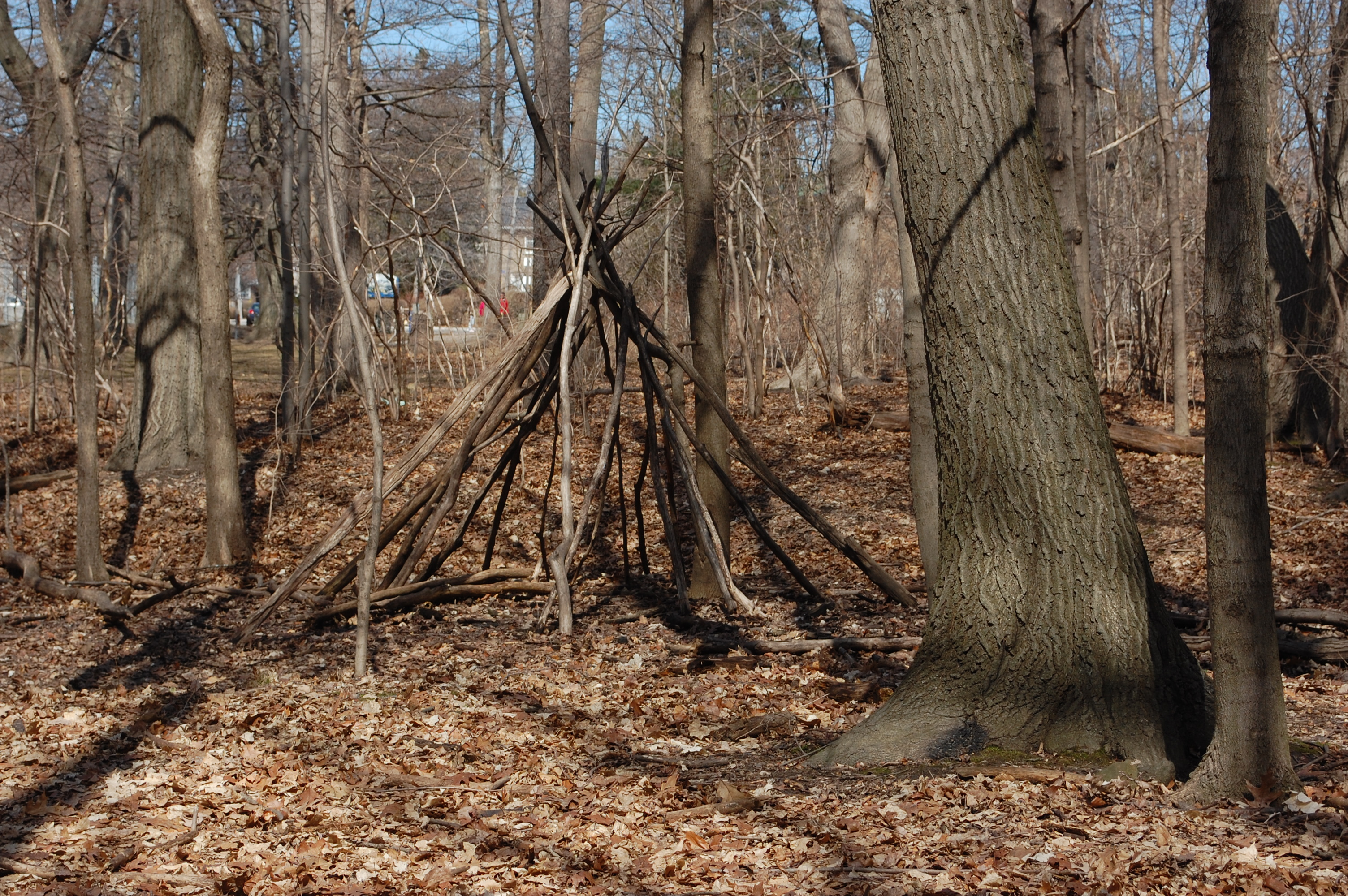 Wigwam in Ravine Bottom Lands